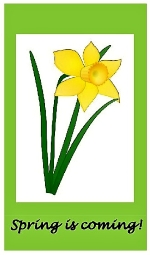 Thumbnail image for Sunshine, daffodils and cupcakes – Lunch Club serve up a doorstep boost for our Seniors
