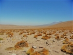 Thumbnail image for Lessons in the desert, part 2